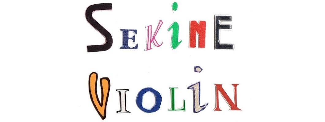 sekine violin 03-3623-3090
