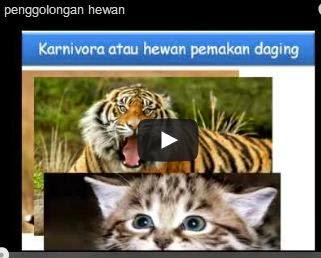 animasi penggolongan hewan
