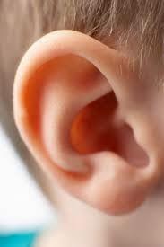 Penyakit Radang Telinga
