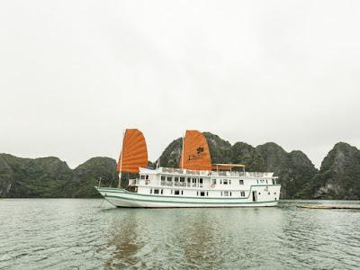 lazalee cruise