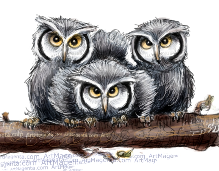 Baby Owls sketch painting. Bird art drawing by illustrator Artmagenta