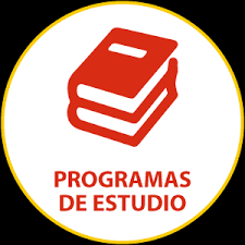 Programas de contenidos