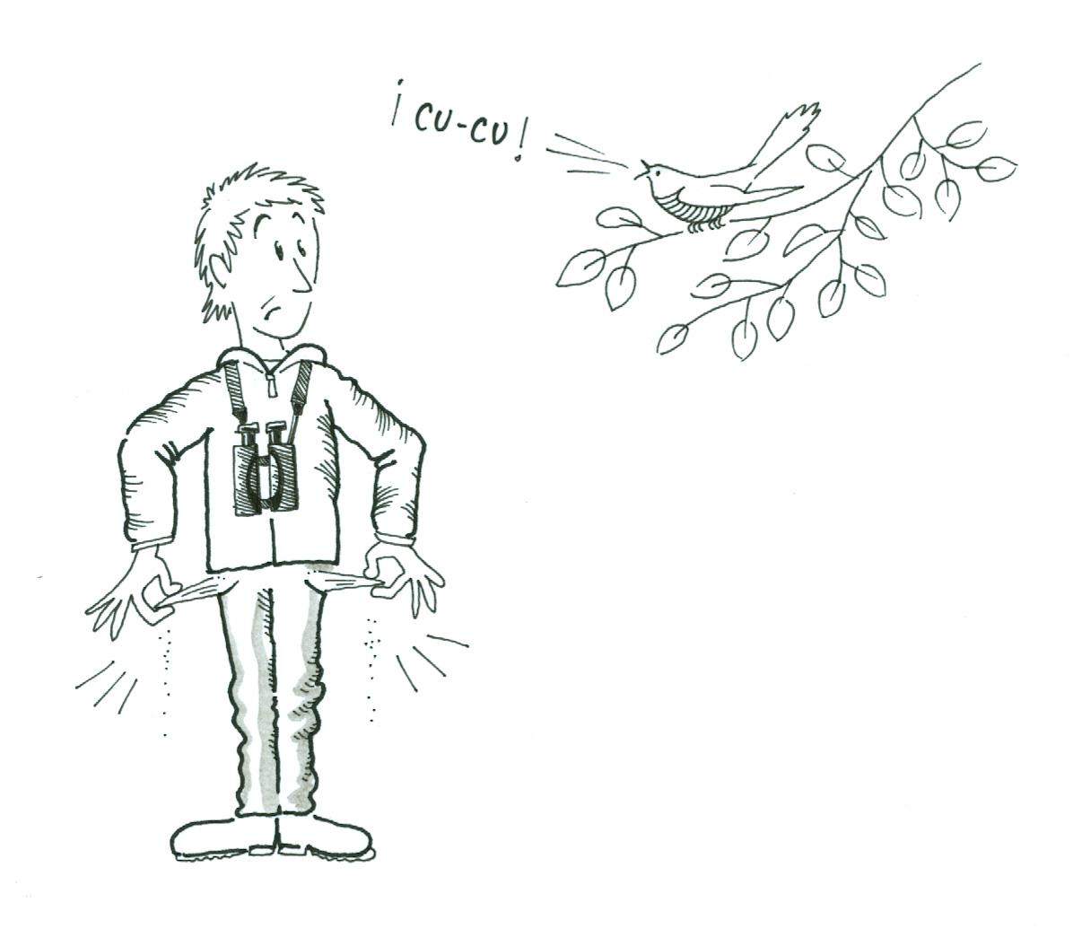 Gorka Gorospe escucha un cuco, pero no tiene dinero!, como dice el refrán, pobre todo el año. Dibujo de Gorka Gorospe extraido de su blog http://gorkagorospe.blogspot.com.es/