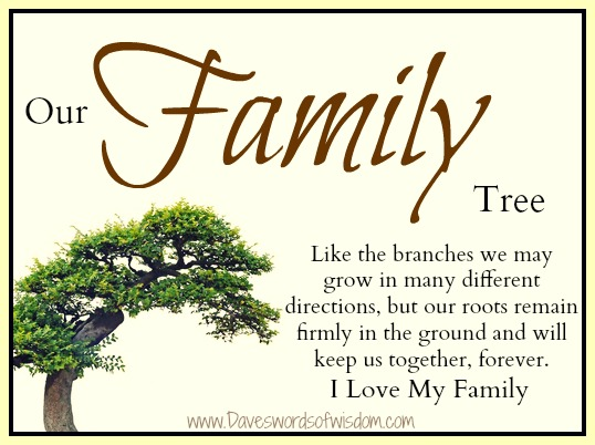 our family tree like branches of a tree we may grow in many different