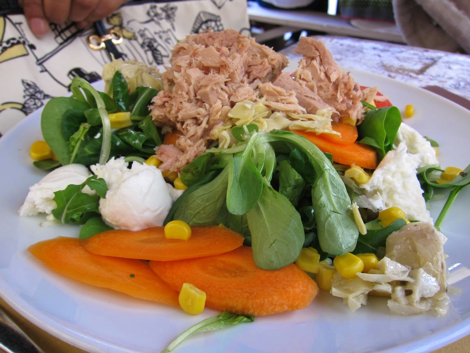 Tuna and mozzarella salad