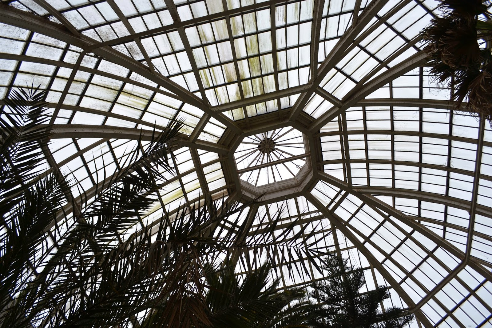glasshouse roof, avery hill winter gardens, eltham, london