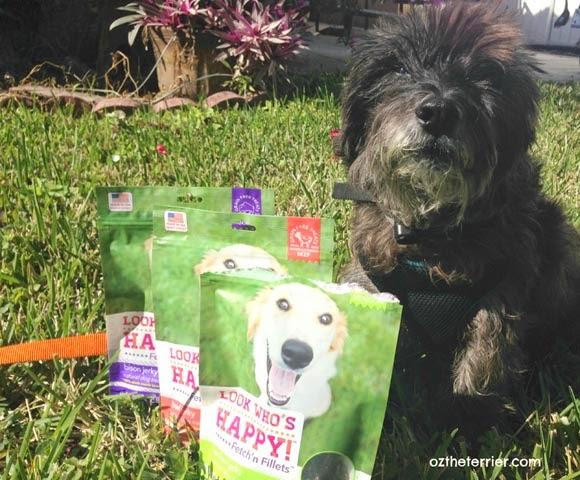 Oz the Terrier: Look Who's Happy Fetch'n Fillets Jerky Treats