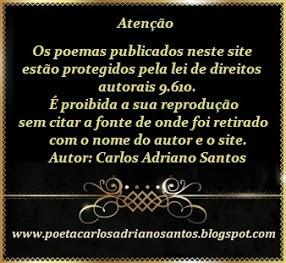 Poemas protegidos pela lei de direito autoral 9.610/98