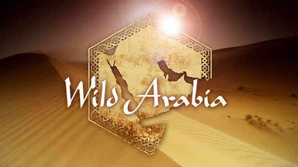 BBC - Wild Arabia E01 - Sand Wind And Stars