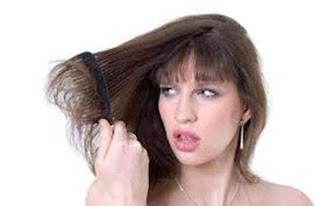 زيت الزيتون وجوز الهند لعلاج الشعر الجاف - شعر تالف جاف