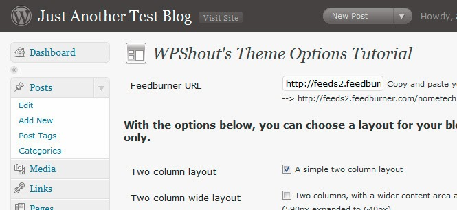 An Advanced Theme Options Panel in WordPress