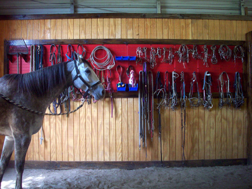 Tack Organization Peg Board