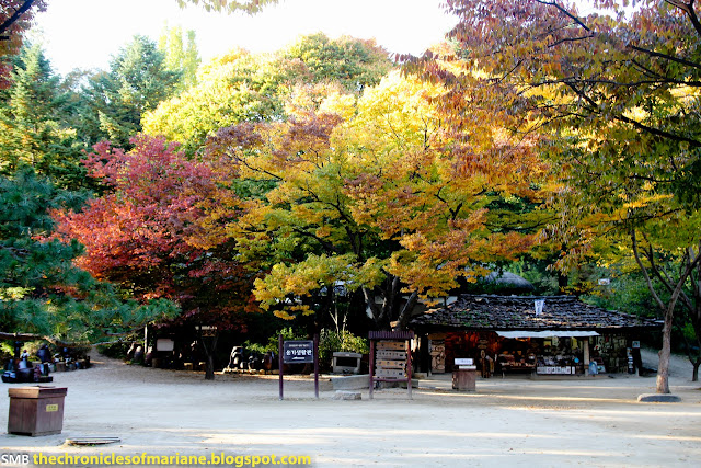 Korean Folk Village autumn