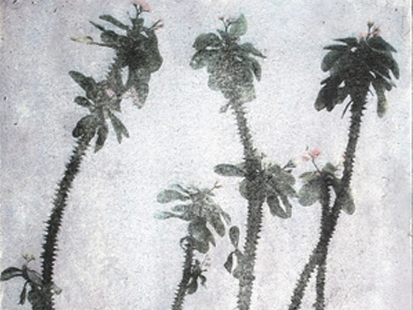 Annunciata Foresti Malerei