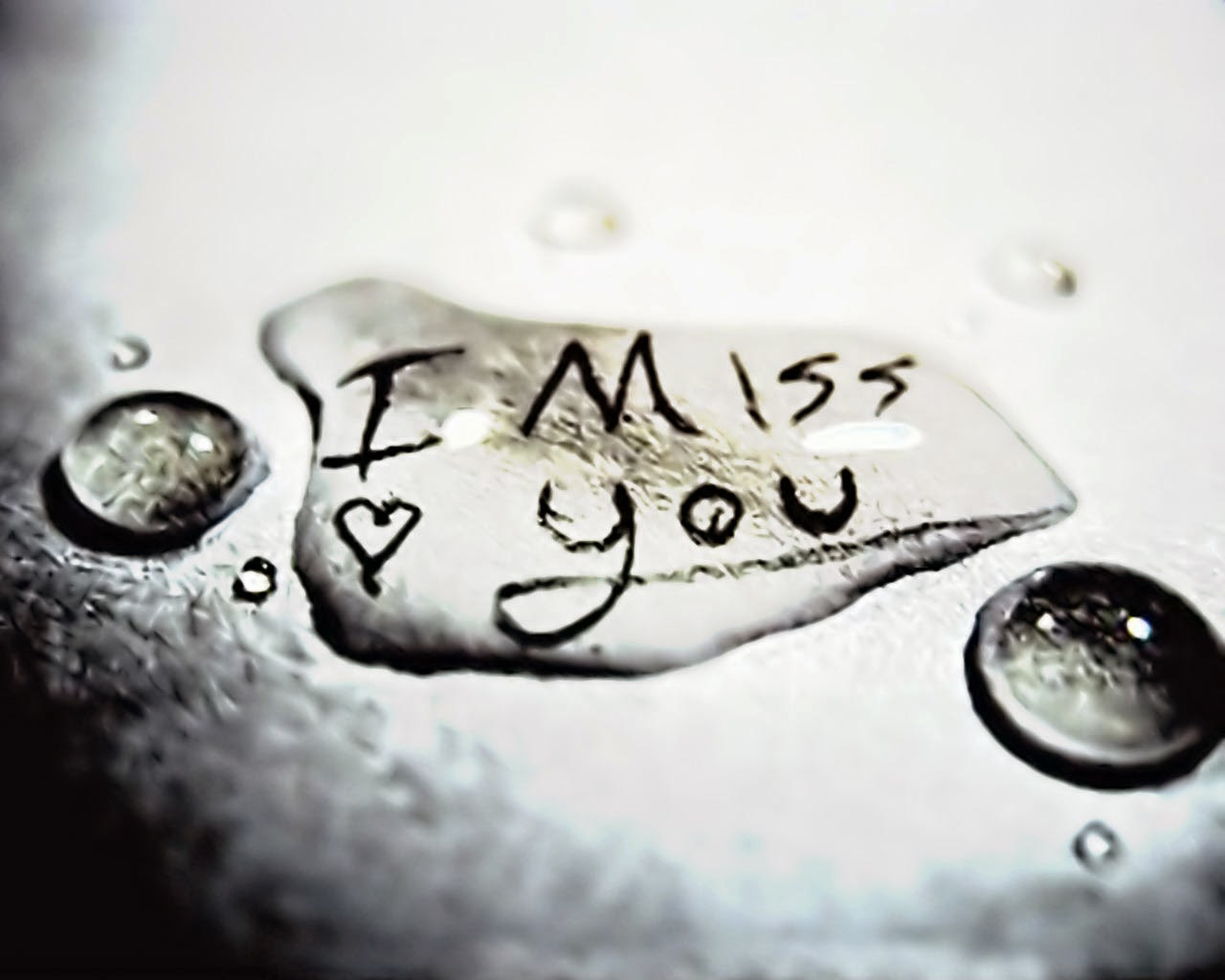 POETICbug_Miss you