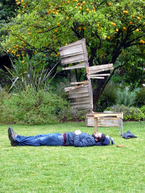 Someone sleeping on wet grass under a sculpture and an orange tree at Feed the Weed