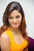 Actress Shilpi Sharma Hot Photo shoot-thumbnail-12