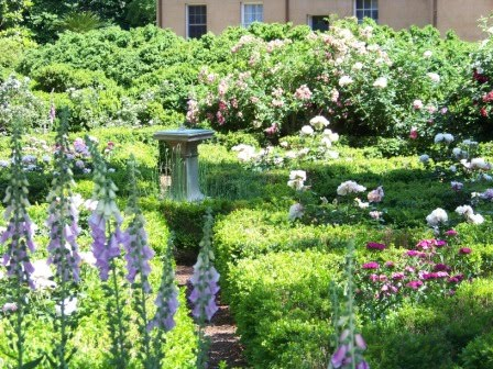 Maryland Pink And Green National Garden Day Free Visit