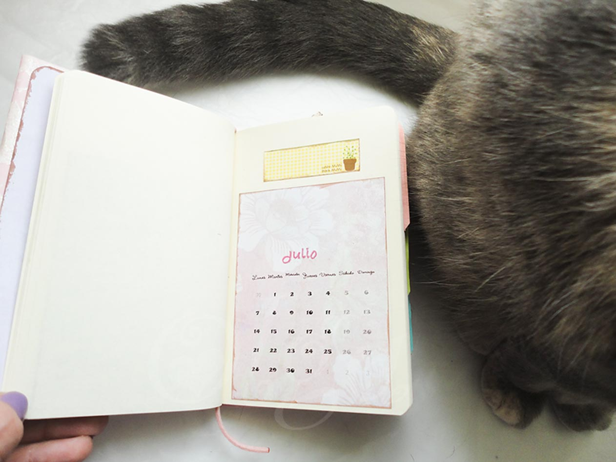 Agenda scrapbooking decorada con calendario 2014