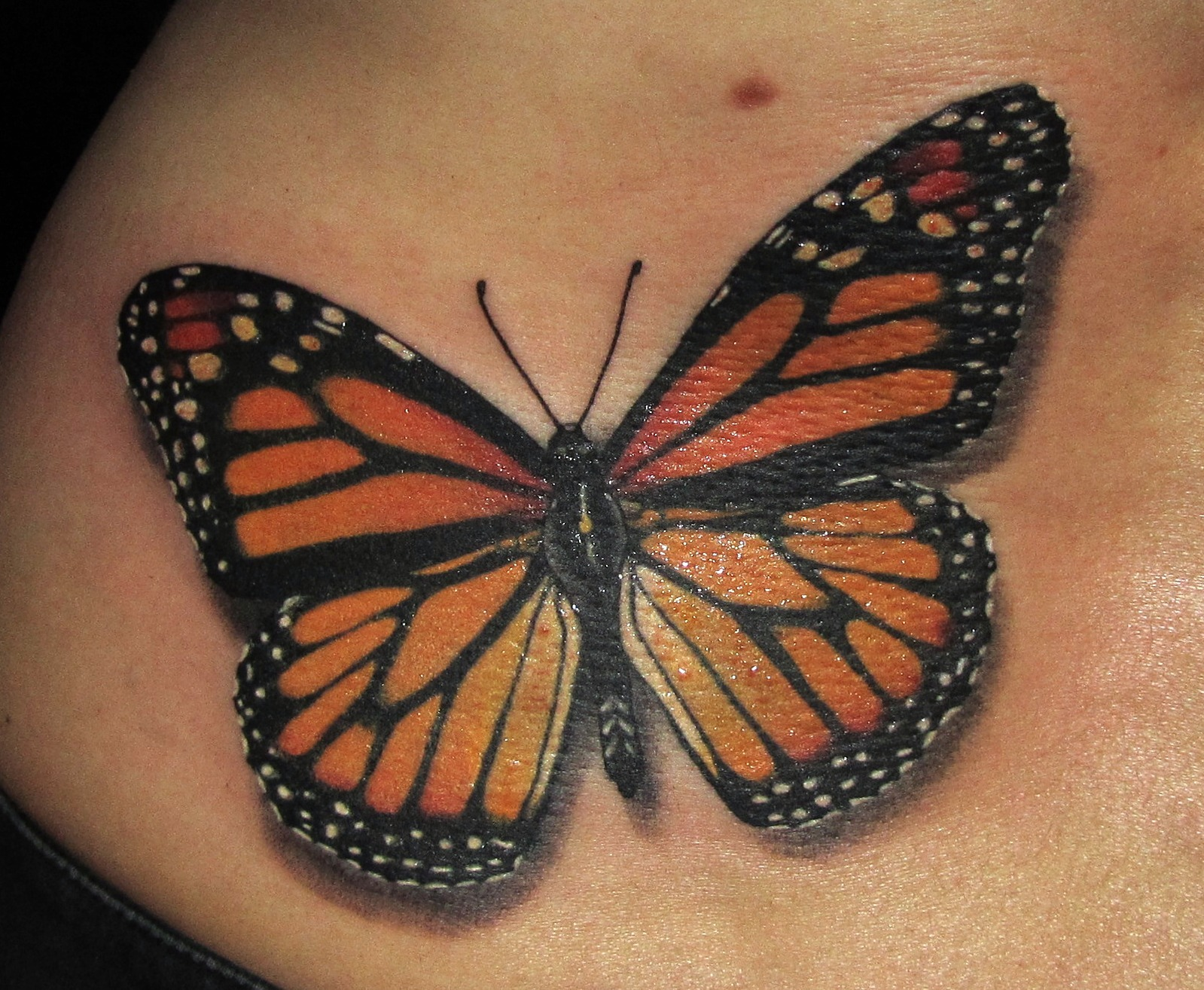 Joseph scissorhands butterfly tattoos for Images of butterfly tattoos