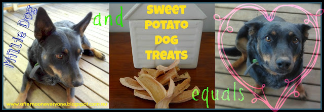 Dehydrated Sweet Potato Dog Treats