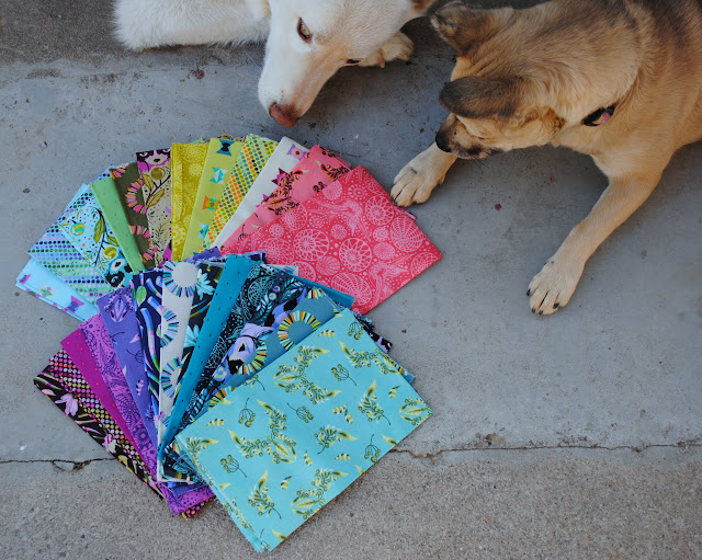 Tula Pink acacia fat quarters with curious dogs