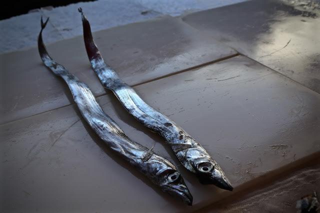 fish at la pescharia, fish market, catania