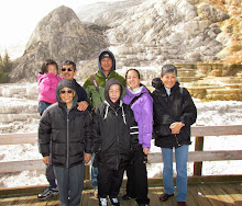 2011 Yellowstone National Park