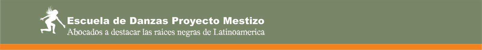 Escuela Proyecto Mestizo
