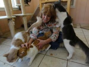 animales de animales haciendo muecas Mundo Imágenes - imagenes de animales haciendo el amor