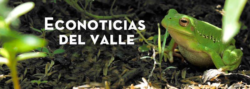 Econoticias del Valle