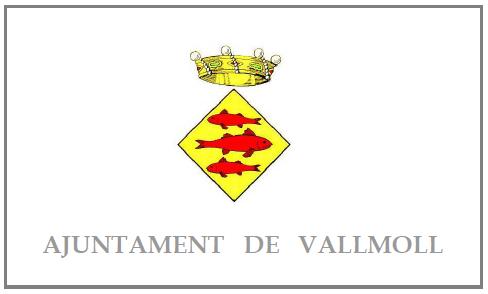 AJUNTAMENT DE VALLMOLL