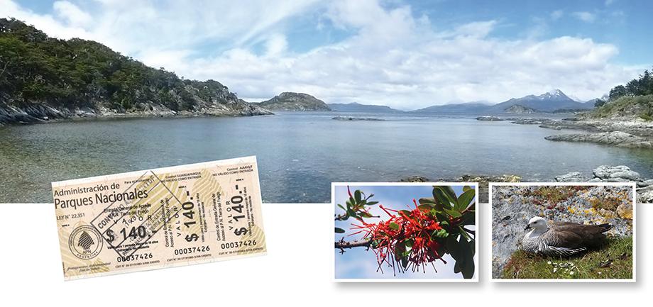 Ynas Reise Blog, Argentinien, Reisetagebuch, Terra del Fuego N.P.