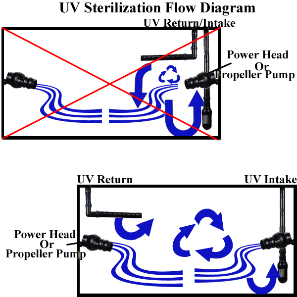 This diagram displays the correct flow pattern for an external UV ...