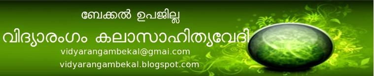 vidyarangam - RESULT