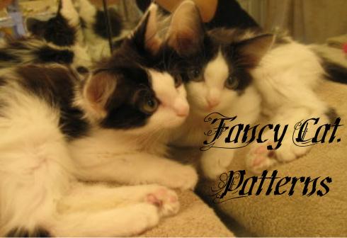 Fancy Cat Patterns