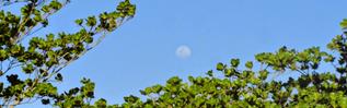 Galeria de fotos Culturismo | Panorâmicas com a lua na serra e no monte