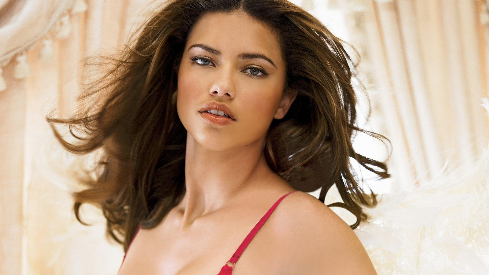 Adriana Lima Secret Model Wallpaper