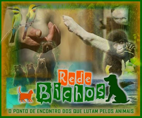 REDE BICHOS