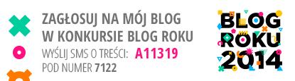 http://www.blogroku.pl/