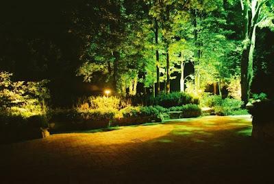 Outdoor Landscape Lighting2