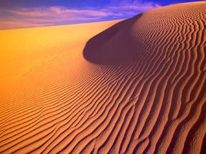 ¿Sabias que cantan las dunas?