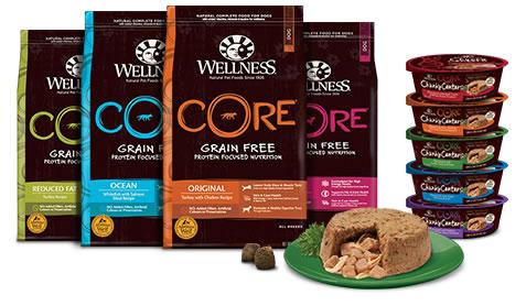 Wellness Core Grain Free Dog Food Uk