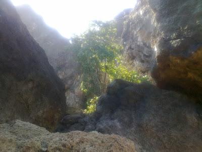 Karang Pantai Indrayanti