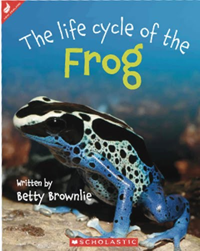 The life cycle of the tuatara by betty brownlie scholastic new