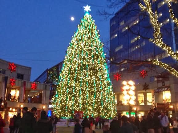 The Christmas tree lit up while we were there, showing many colored ...