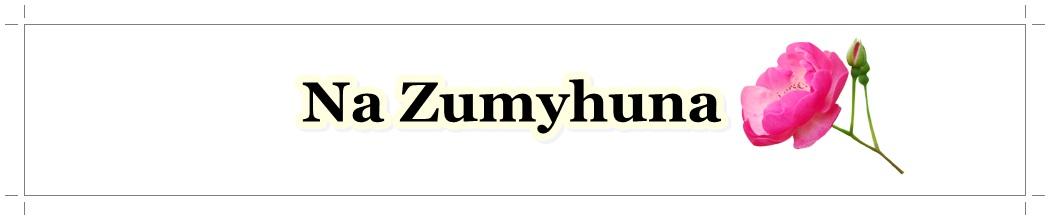 Na Zumyhuna