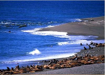 La Patagonia Argentina 2