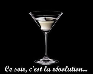 CE SOIR, C&#39;EST LA REVOLUTION