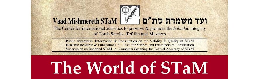 The World of STaM